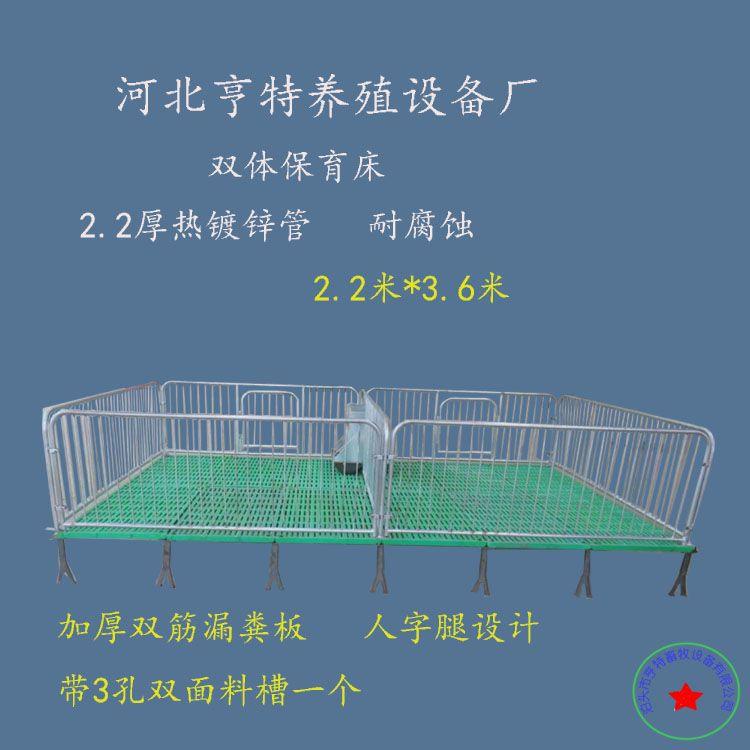 仔猪保育床限位栏产床复合板小猪用加厚连体母猪保育栏养猪设备
