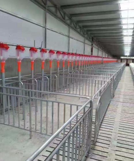 定制生產安裝豬舍自動化料線 喂豬上料控料線設備 鍍鋅料塔