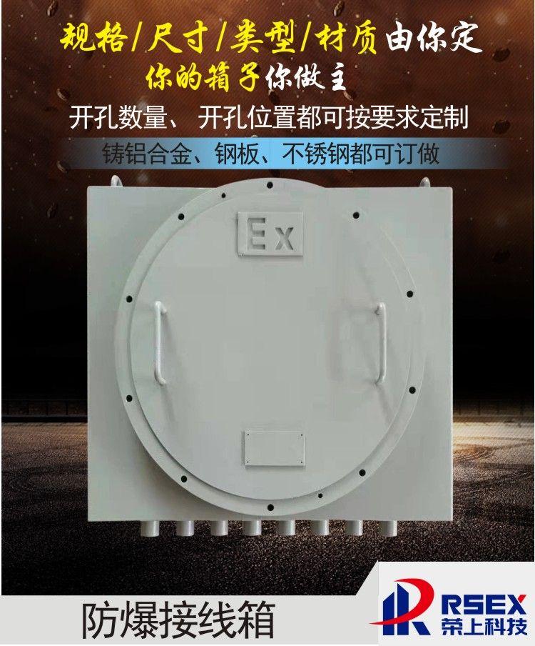 防爆配电箱仪表照明配电控制柜动力检修箱回路400*500隔爆接线箱