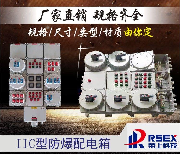 BXD防爆配电箱户外三防照明控制箱防水防尘防腐配电柜