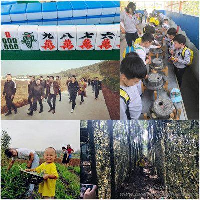 江夏樂農生態園員工團建4項目,樂農湖畔給你添助力
