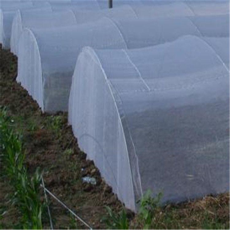 供应加厚蚂蚱大棚网全新料蚂蚱养殖网耐用3到5年