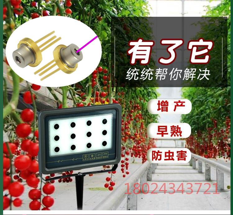 激光镭射植物生长补光灯温室大棚植物激光补光灯草莓激光生长灯