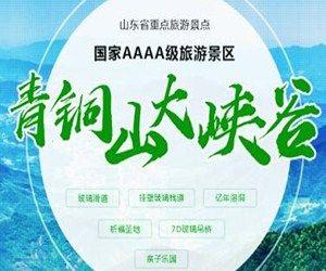 山东华凤旅游发展有限公司