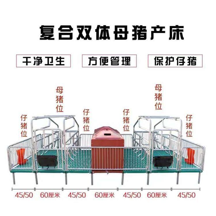 母猪产床 分娩床 半复合双体母猪产床栏 养猪设备
