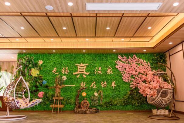 江蘇綠羊溫泉酒店項目策劃