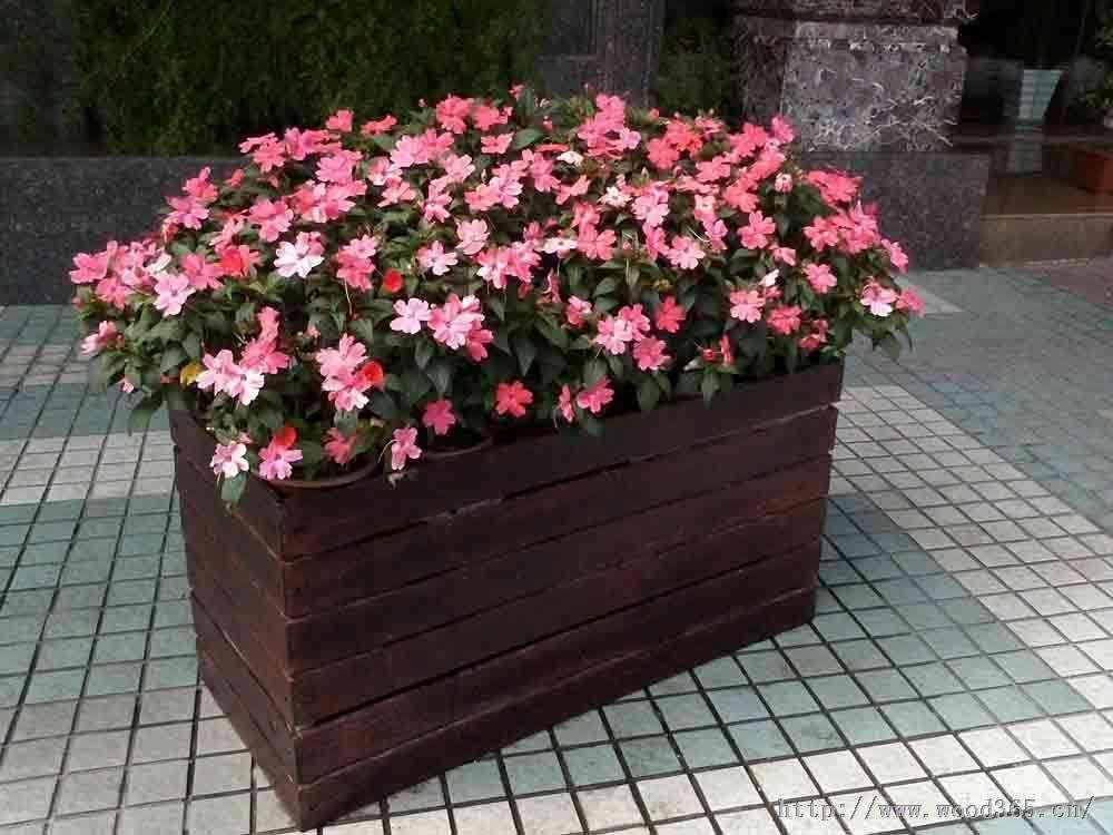 浅析花盆与花箱阳台,廊架和花架的区别