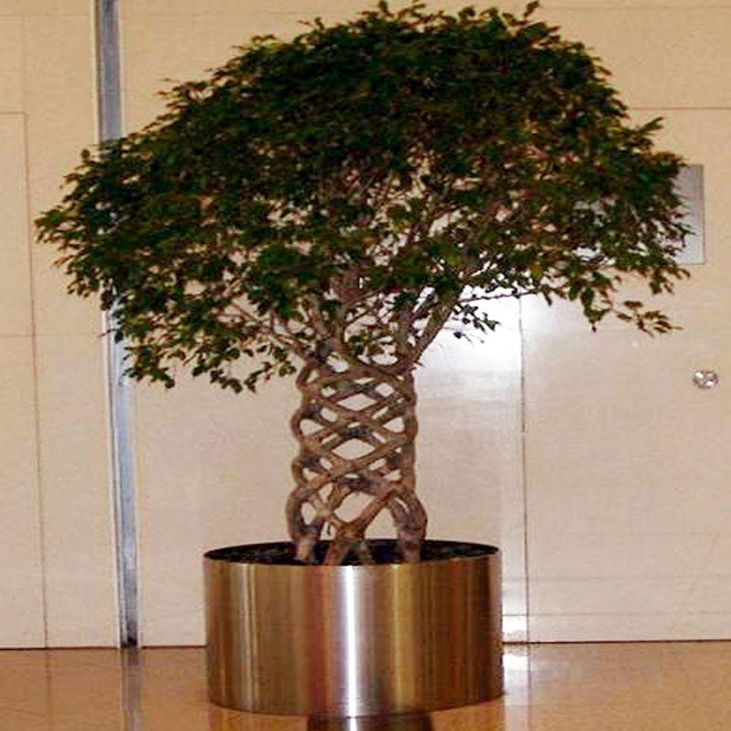 专业不锈钢花盆 上海不锈钢花盆 不锈钢景观花盆
