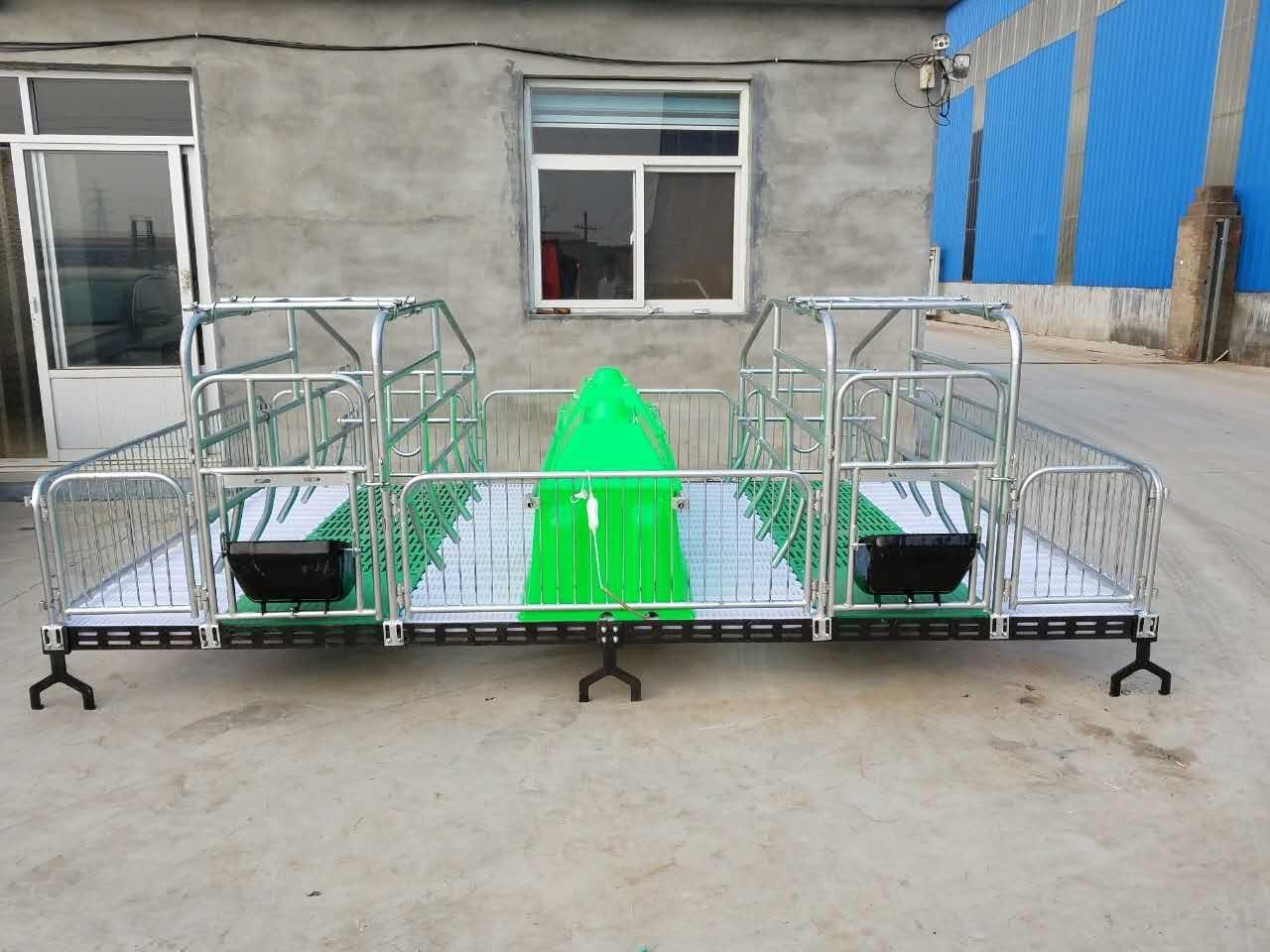 定制热镀锌定位栏限位栏双体母猪产床人字腿支撑 仔猪复合保育床
