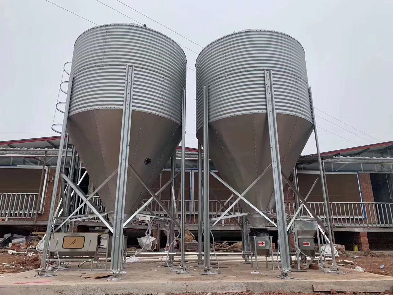 供應育肥豬舍自動化料線 母豬定位欄 母豬單體限位欄