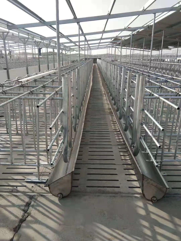 廠家直銷 豬舍設備自動化料線 全自動飼喂養豬料線