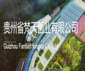 贵州省梵天菌业有限公司