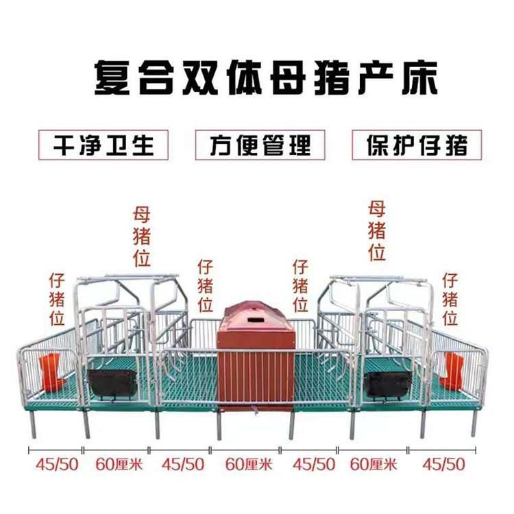母猪产床 复合产保一体式 加厚镀锌管 双体母猪产床 母猪定位栏