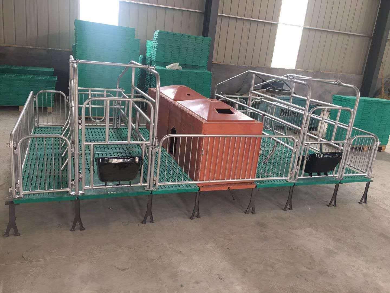 复合保育一体产床 复合板母猪产床 猪用产保一体产床 母猪限位栏保育床