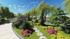 植物造景在园林绿化中的作用