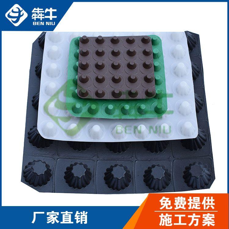 福建省-80mm大口径排水板-型号齐全