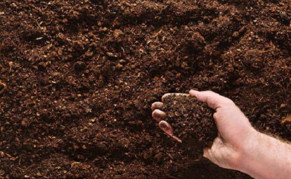 園林園藝土壤改良