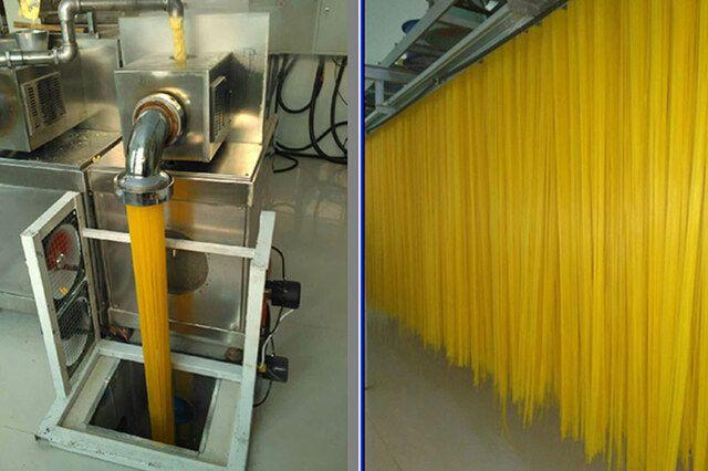玉米杂粮面条设备