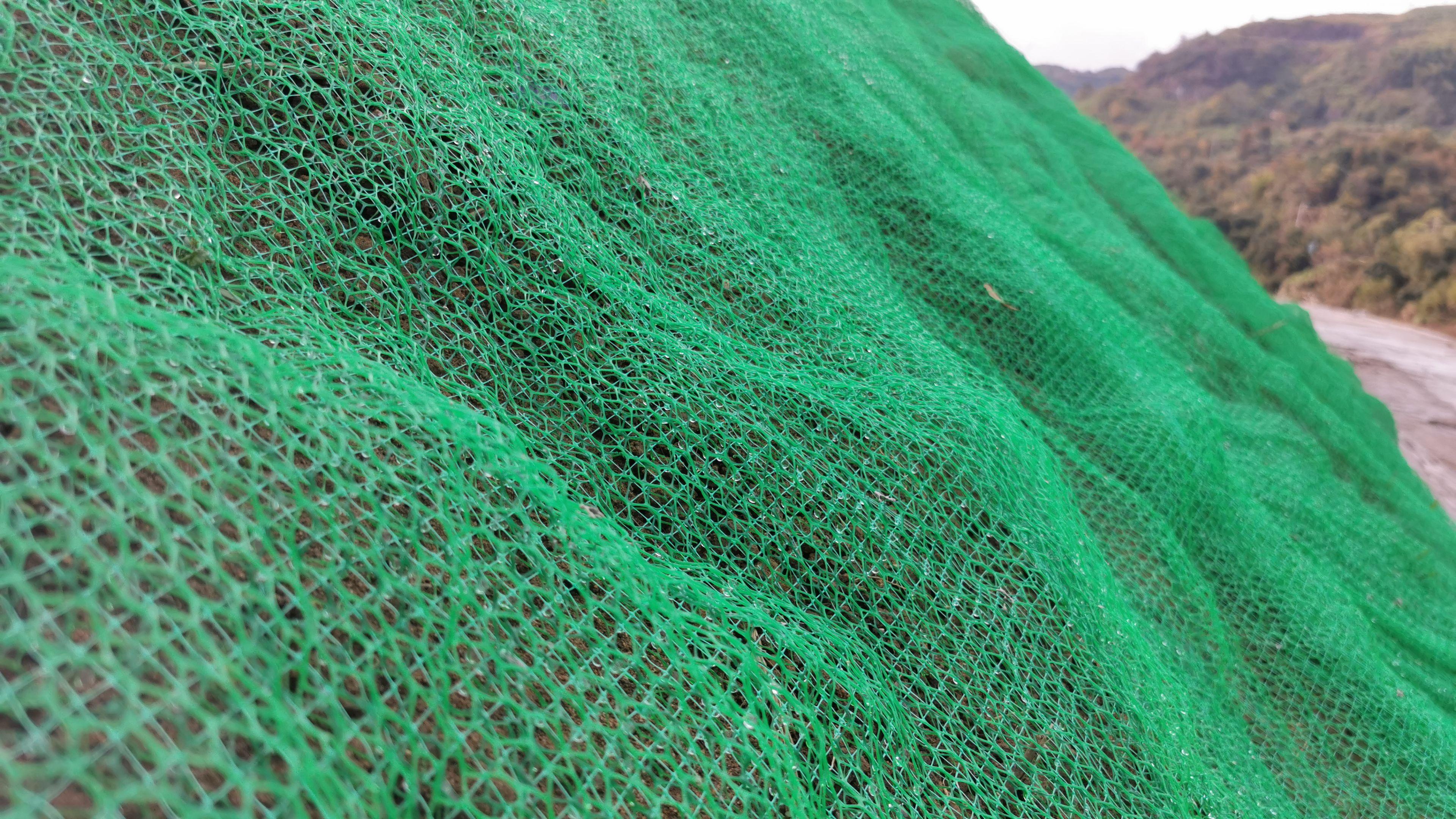 四川三维植被网生产厂家