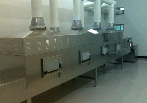 微波隧道式瓜子熟化烘烤干燥设备