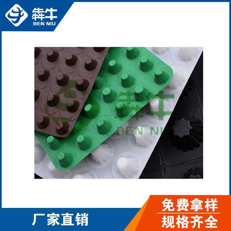 湛江市HDPE绿化塑料排水板型号齐全