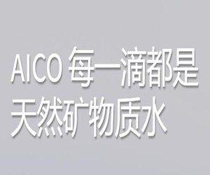 北京艾可尼尔科技有限公司