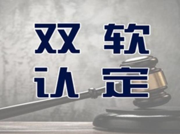 聊城陽谷雙軟企業的申請條件和認定標準是什么
