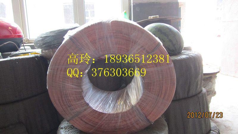 江苏厂家低碳铜包钢裸线ccs厂 导电红铜铁丝厂